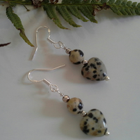 Dalmation Jasper Sterling Silver Earrings