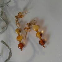 Baltic Amber Gold Vermeil Stud Earrings
