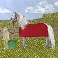 Birthday card - grey pony, grey horse