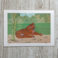 Tiger print - zoo animal art picture of reclining tiger - safari art africa art