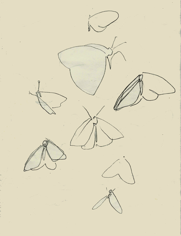 Art print, 'Pencil butterflies', original mixed media illustration, butterfly