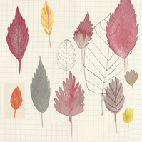 Art print 'October' leaf illustration, drawing, nature, autumn
