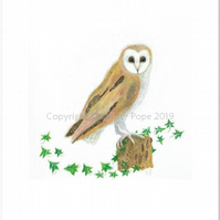 Fine art PRINT of a barn owl resting on an ivy clad tree stump.