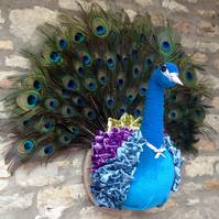 Faux taxidermy handmade velvet diva peacock bird animal head wall mounted trophy