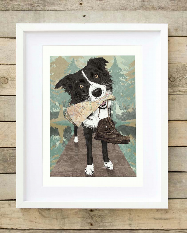 Border Collie art print, Lake District gift for boyfriend, gift for husband