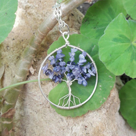 Tree of life with Tanzanite