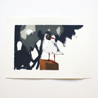 Black Headed Gull Hand Pulled Limited Edition Screen Print