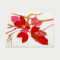 Sycamore Red Limited Edition Screen Print by Fiona Hamilton