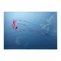 Kite Hand Pulled Limited Edition Screen Print