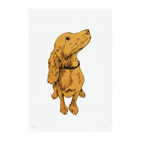 Golden Puppy Hand Pulled Limited Edition Dog Print