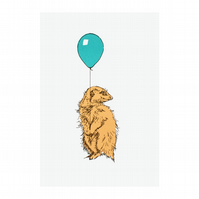 Meerkat with Balloon Turquoise Limited Edition Screen Print by Fiona Hamilton
