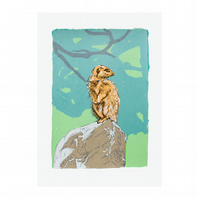 Meerkat Hand Pulled Limited Edition Screen Print by Fiona Hamilton