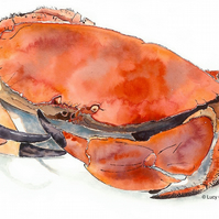 Crab - A4 Giclee Print of an Original Blotted Line Illustration