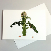 Broccoli. Greetings Card. Funny Poetry Card. Birthday Card for Food Lover