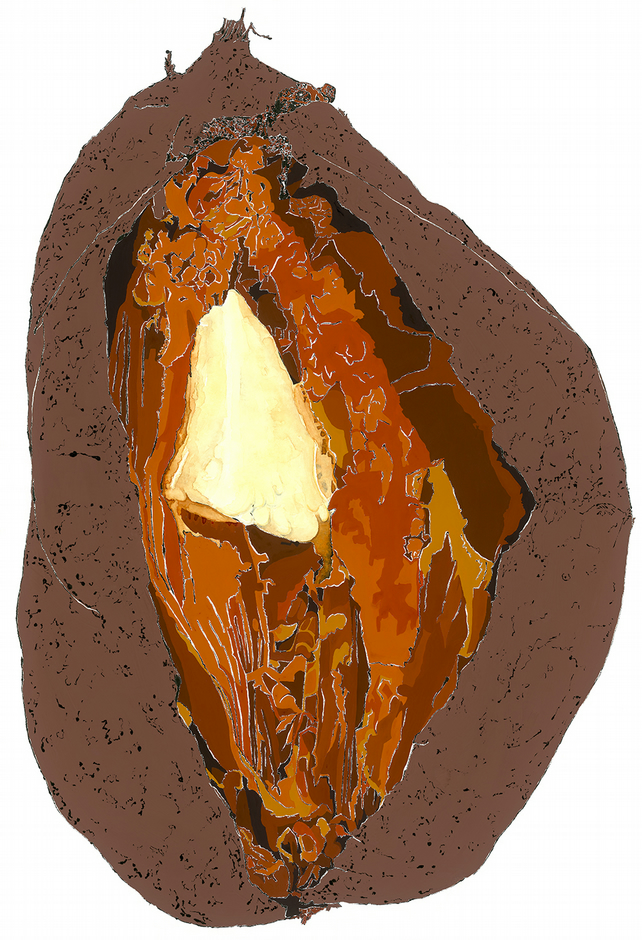 Sweet Potato - Giclee print of an original blotted line illustration