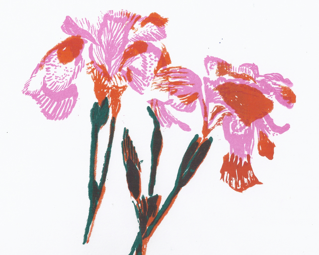 Irises by Barbara Smith - screen print serigraph