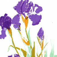 Mauve Irises by Barbara Smith - screen print serigraph