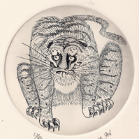 Tiger by Richard Whyles - Copper Plate Engraving