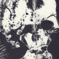 Skull by Christine Stangroom - Photopolymer etching from wax
