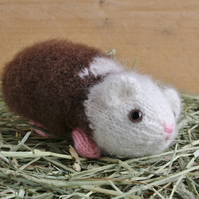 Harold the Hand Knitted Brown and White Guinea Pig