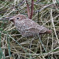 Hand embroidered  Song Thrush