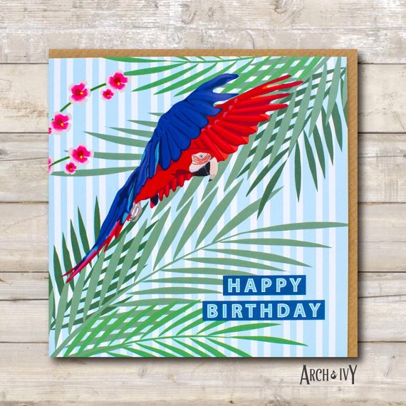 Macaw Happy Birthday Greeting Card