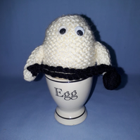 Ghost Egg Cosy