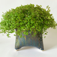 Tripod Plant Pot Holder