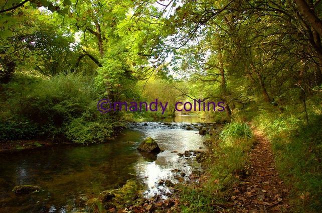 River Walk at Millers Dale, Derbyshire - A4 Archival Matte print
