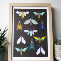 Moth and butterfly A4 print