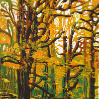 Biddulph Autumn Woodland - Original Hand Pressed Linocut Print Ltd Edition
