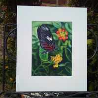 A5 Print from my original Painting, Butterfly