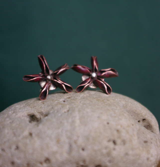 Star Anise Stud Earrings