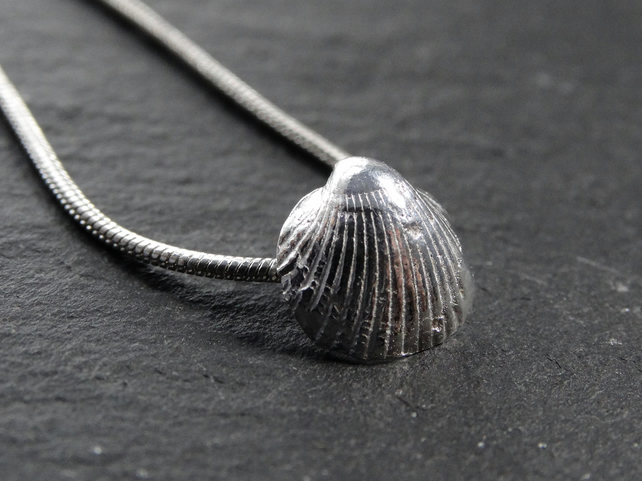 Small, sterling silver, cast cockle shell. Cornwall