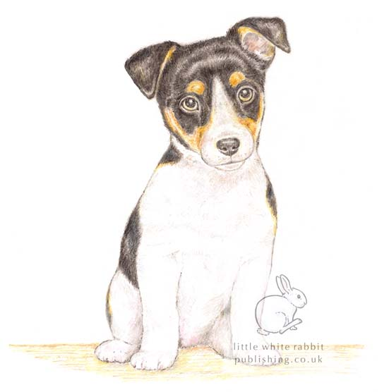 Jack the Jack Russell - Blank Card