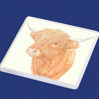 Highland Cow - Coaster