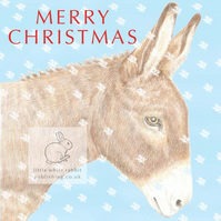 Dougal the Donkey - Christmas Card