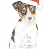 Jack the Jack Russell - Christmas Hat Card