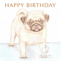 Titus the Pug - Birthday Card