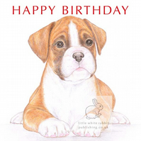 Jake the Boxer - Birthday Card