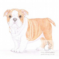 Winnie the English Bulldog - Blank Card
