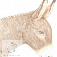 Dougal the Donkey - Birthday Card