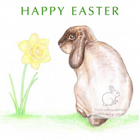 William the Rabbit - Easter Card