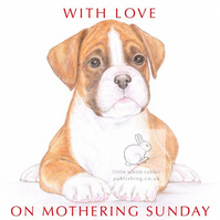 Jake the Boxer - Mother's Day Card