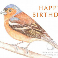 Chaffinch - Birthday Card