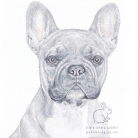 Barney the French Bulldog - Blank Card