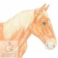 Suffolk Punch Horse - Blank Card