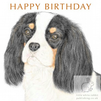 Dolly the Cavalier -  Birthday Card