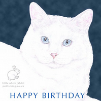 MIickey the Cat - Birthday Card