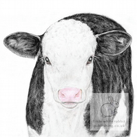 Black & White Calf - Blank Card